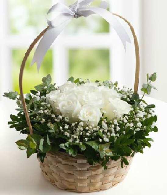sepette beyaz güller